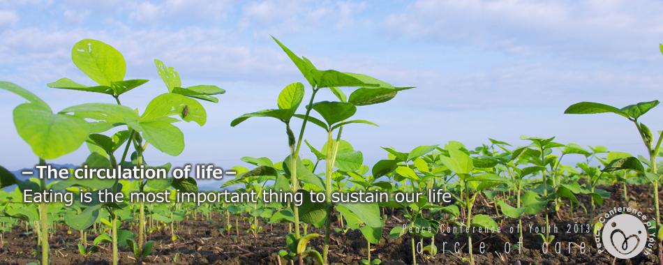 食は生命を維持する為に最も必要なもの